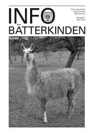 Ausgabe Info März 2013 - Bätterkinden