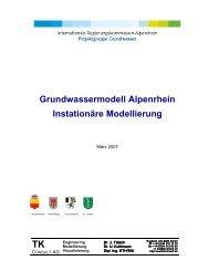 Grundwassermodell Alpenrhein Instationäre Modellierung
