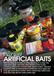 Artificial Baits - Quest Baits