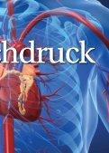hohem Blutdruck - MeinDoktor - Seite 7