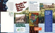 Managing Your Forest in a Big Picture Context: an introduction to ...