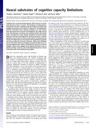 Neural substrates of cognitive capacity limitations