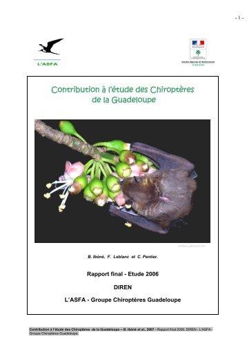 Contribution à l'étude des Chiroptères de la Guadeloupe