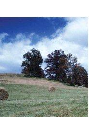 L'environnement et les ressources naturelles - Département de l ...