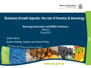 the new ministry: strategy and innovation - Bioenergy Association of ...