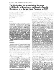 The Mechanism for Acetylcholine Receptor Inhibition by ...