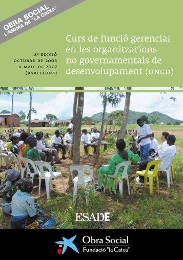 Curs de funció gerencial en les organitzacions no governamentals ...