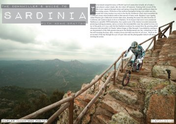 The downhiller's guide to with adam brayton - Distilledmag.com