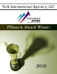 MB PINnacle Award Winner 2010 - 2
