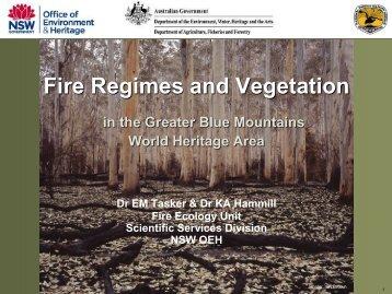 Fire Regimes and Vegetation