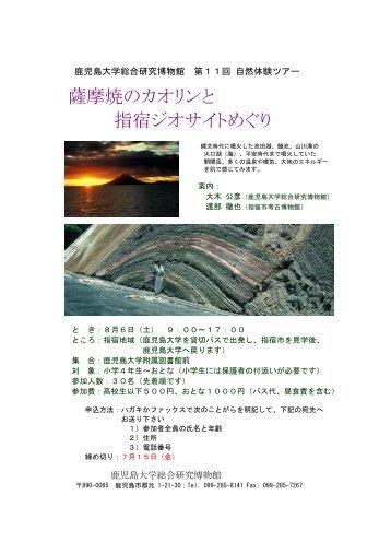 (Ariake-kai), Southwest Japan - 鹿児島大学総合研究博物館