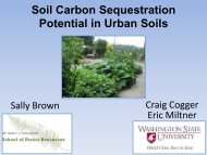 Soil Carbon Sequestration Potential in Urban Soils