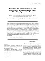 Method for Bias Field Correction of Brain T1-Weighted Magnetic ...