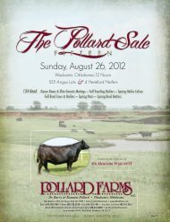 Sunday, August 26, 2012 - National Cattle Services, Inc.