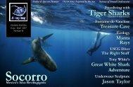 Treasure Cave Manta Rays Great White Shark ... - X-Ray Magazine