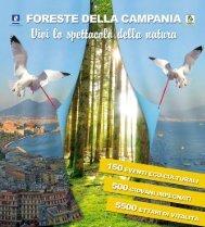 Scarica il Programma completo - Regione Campania