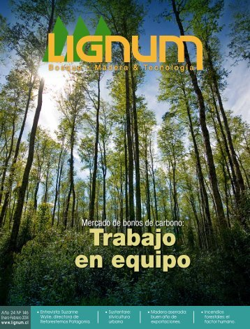 LIGNUM-146