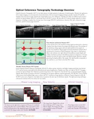 Mouse Lung Imaging Flow Velocity Arterial Imaging