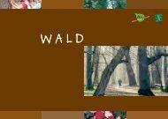 Wald (pdf) - IMORDE Projekt- & Kulturberatung