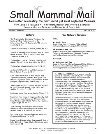 Small Mammal Mail Newsletter - Rufford Foundation