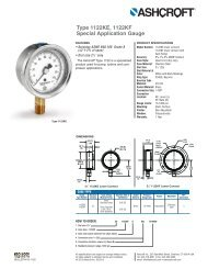 Type 1122 Special Application Gauge - Temp-Press Inc