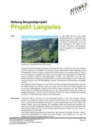 Stiftung Bergwaldprojekt Projekt Langwies