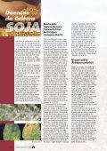 Principais doenças - Page 4