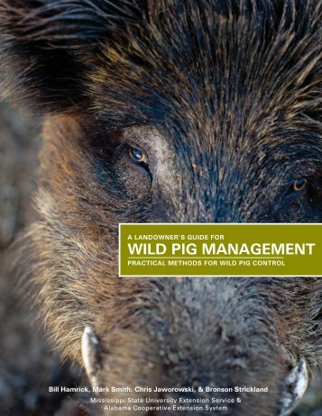 P2659 A Landowner's Guide for Wild Pig Management - MSUcares