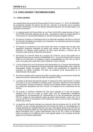 Cap 11 EIA PEC.Chocan - Conclusiones y recomendaciones