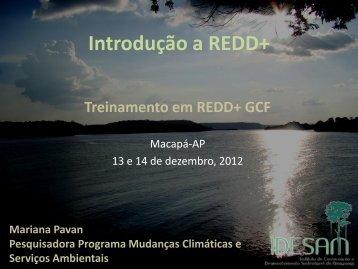 MPavan_Introducao_REDD