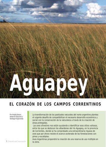 Nota aguapey.pmd - Aves Argentinas