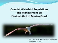 Colonial Waterbird Populations and Management on Florida's Gulf ...