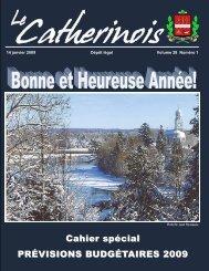 Cahier spécial PRÉVISIONS BUDGÉTAIRES 2009 - Ville de Sainte ...