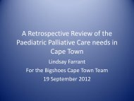Cultural competency in paediatric palliative care a literature review popular dissertation chapter writer service for college