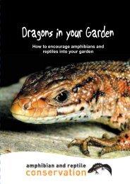 Dragons in your Garden (NEW)