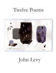Twelve Poems John Levy