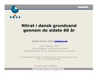 Nitrat i dansk grundvand gennem de sidste 60 år - ATV - Jord og ...