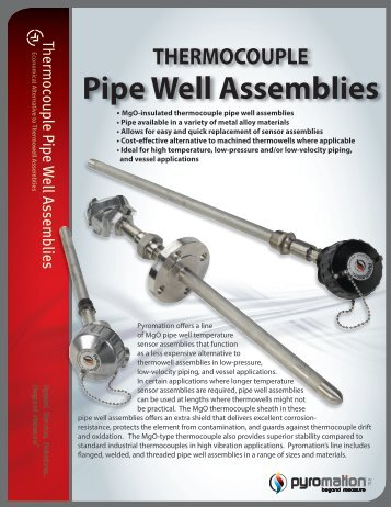 THERMOCOUPLE Pipe Well Assemblies