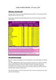 DAIRY MARKET REPORT - Irish Farmers Association