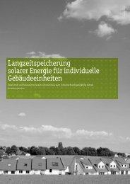 Langzeitspeicherung solarer Energie für individuelle - HTW Berlin
