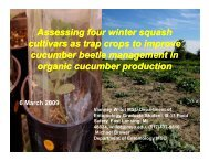 Assessing Four Winter Squash Cultivars as Trap Crops to Improve ...