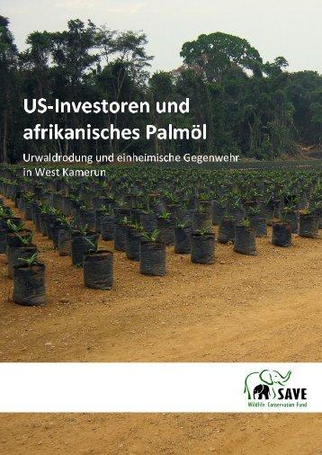 Wie US-Investoren Palmöl-Plantagen im afrikanischen Regenwald ...
