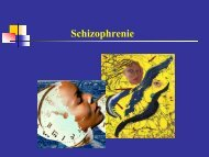 Schizophrenie - Medizinische Universität Graz
