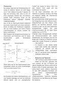 Standardmodell der Teilchenphysik - Seite 3
