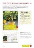 International Catalogue - Seite 6