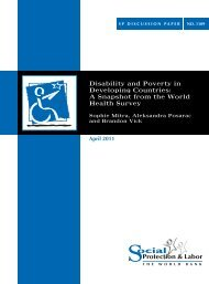 disability and poverty in developing countries - World Bank Internet ...