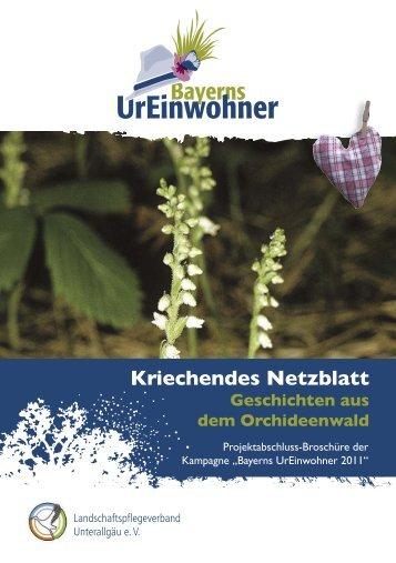 Kriechendes Netzblatt - Bayerns UrEinwohner