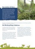 Kriechendes Netzblatt - Bayerns UrEinwohner - Seite 6