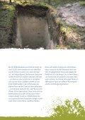 Kriechendes Netzblatt - Bayerns UrEinwohner - Seite 7