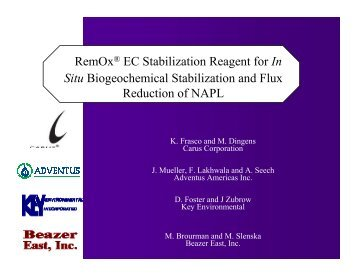 RemOx® EC Stabilization Reagent for In Situ Biogeochemical - IPEC